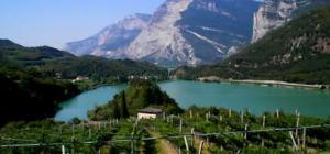 vigneti-attorno-al-lago-di-santa-massenza_78556_407x191